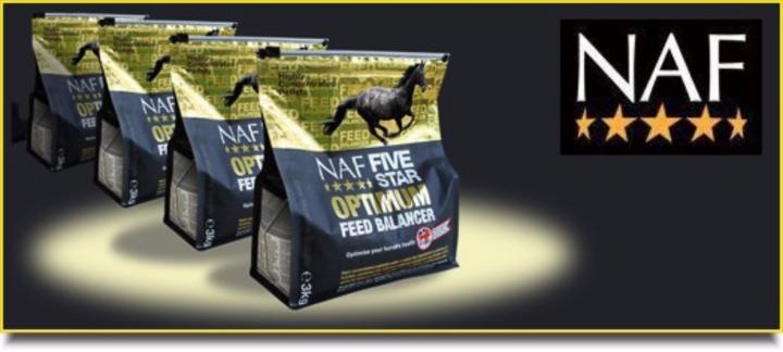 Bearts Norfolk Gold Dog Food