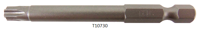 T10730