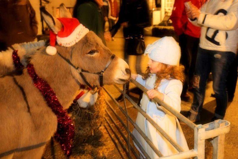 Polperro Christmas Lights Switch On Sat 5th Dec 2020