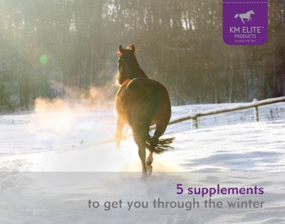 5 Supplements to get you through the winter
