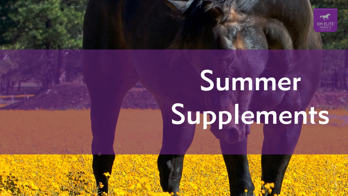 Supplements for the Summer