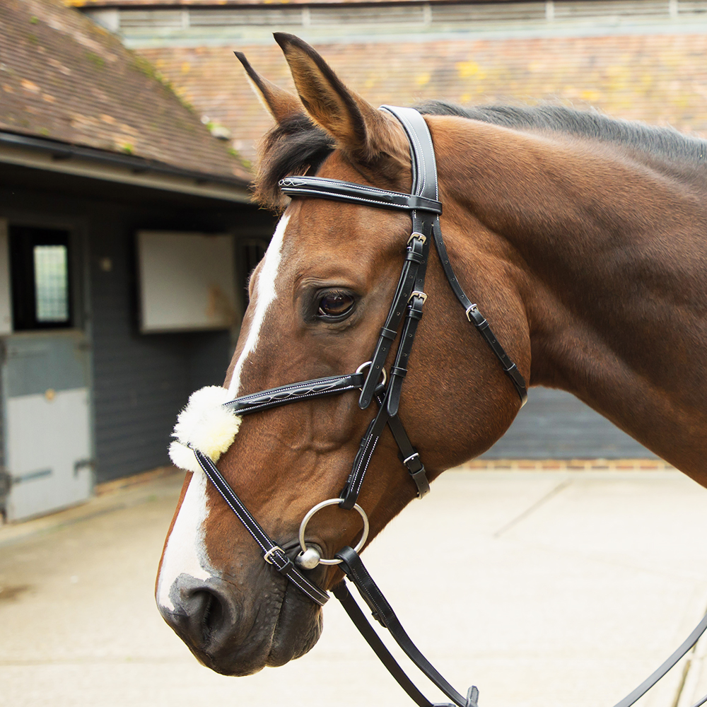 Grackle Bridle Black