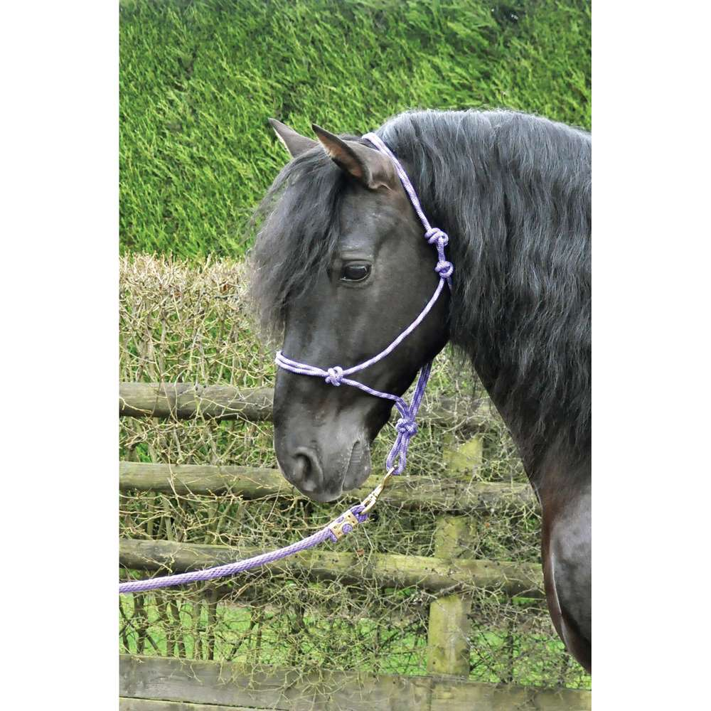 KM Elite Rope Halter Black/Grey