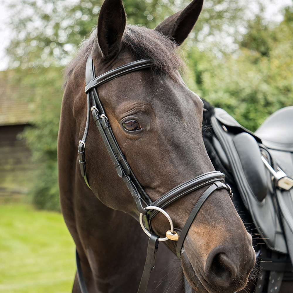 KM Elite Training Bridle Black