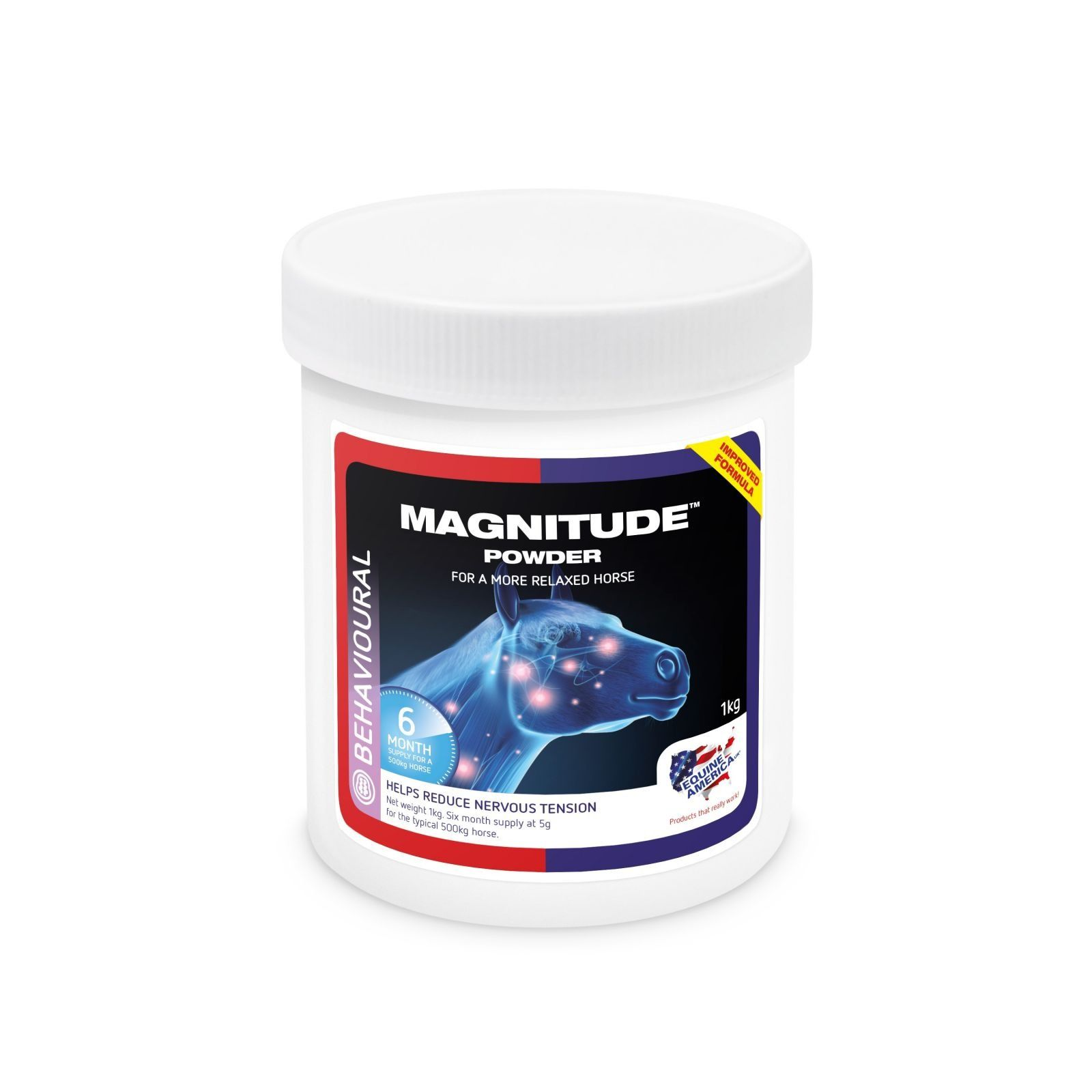 Magnitude 1kg