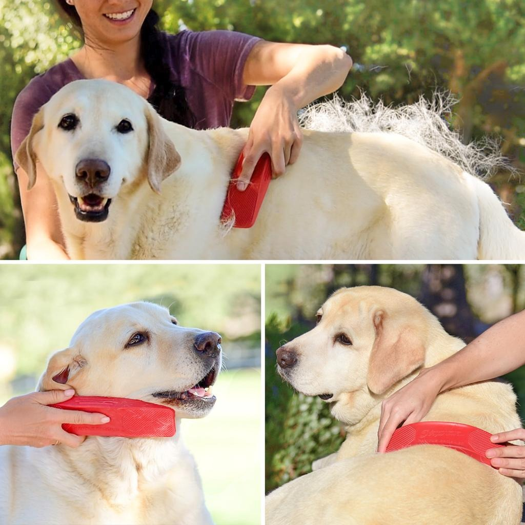 StripHair Gentle Groomer for Dogs & Cats