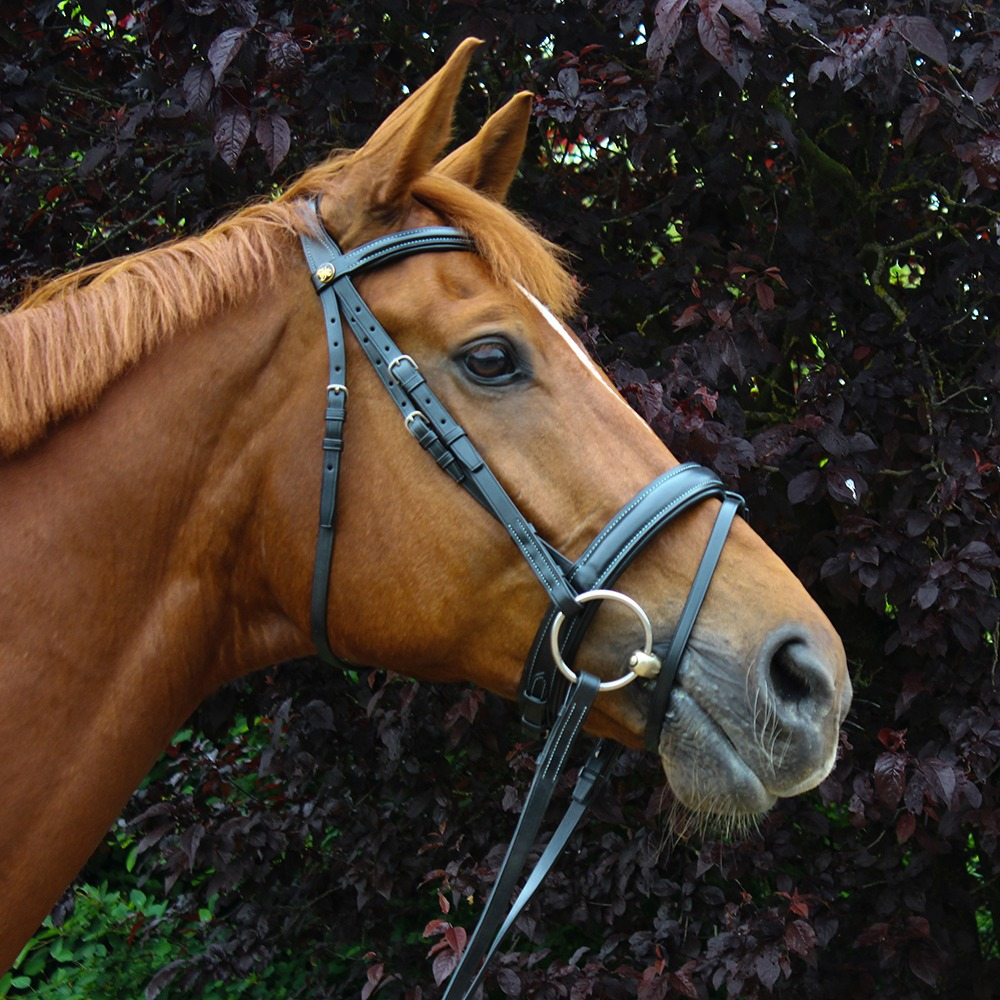 Peter Horobin Contrast Stitch Bridle