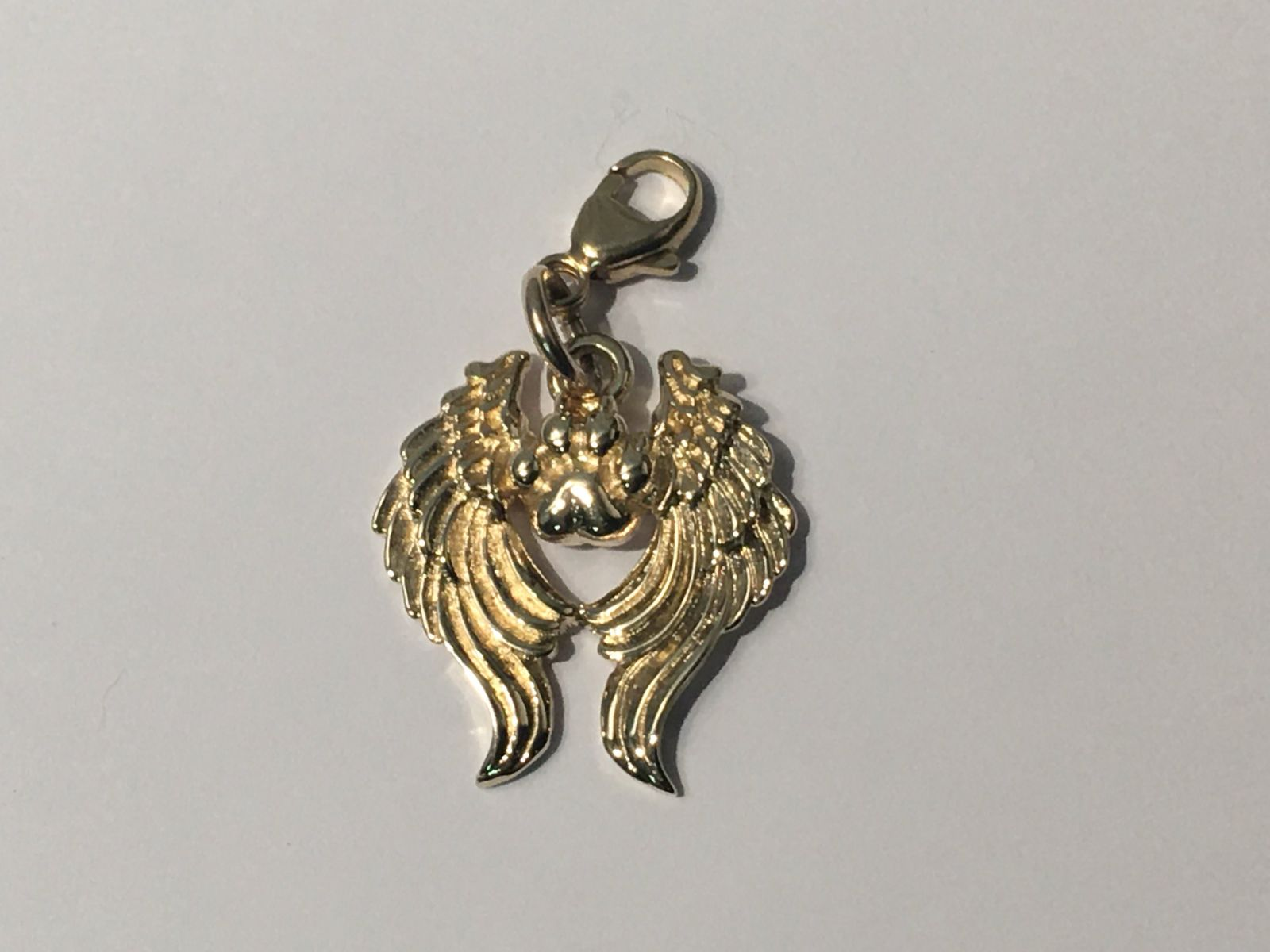 Paws in Heaven Charm - 9ct Gold