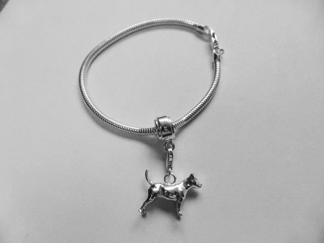 Pandora Bracelet Silver Carrier Bead