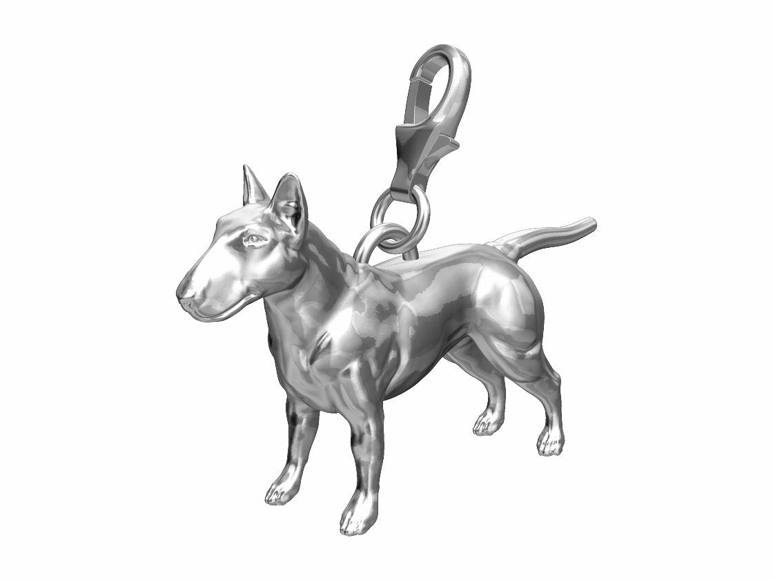 English Bull Terrier Charm