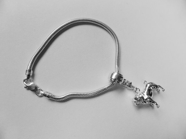 Shih Tzu Charm - Long haired