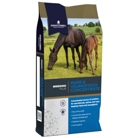 Dodson & Horrell Mare & Youngstock Mix