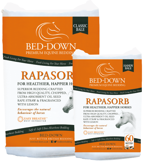 Bed Down Rapasorb