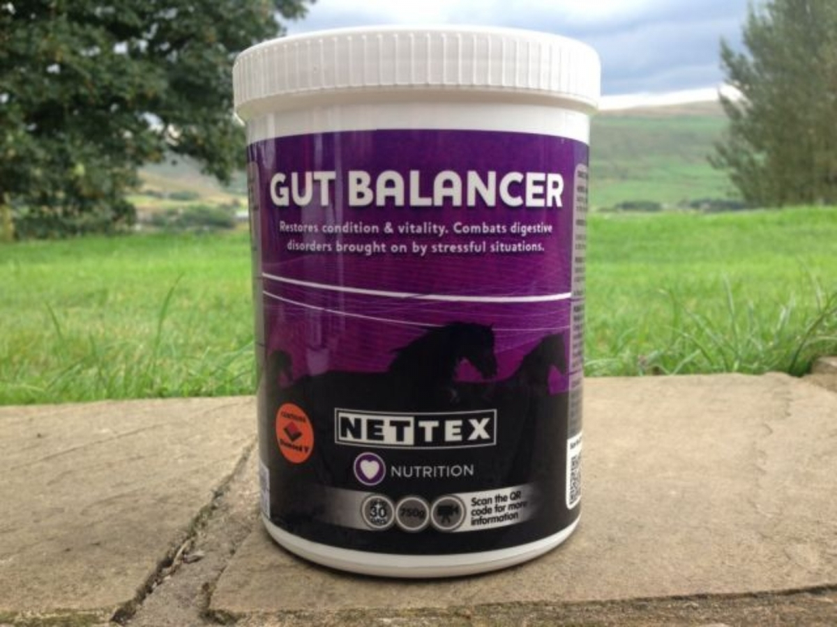 Nettex Gut Balancer