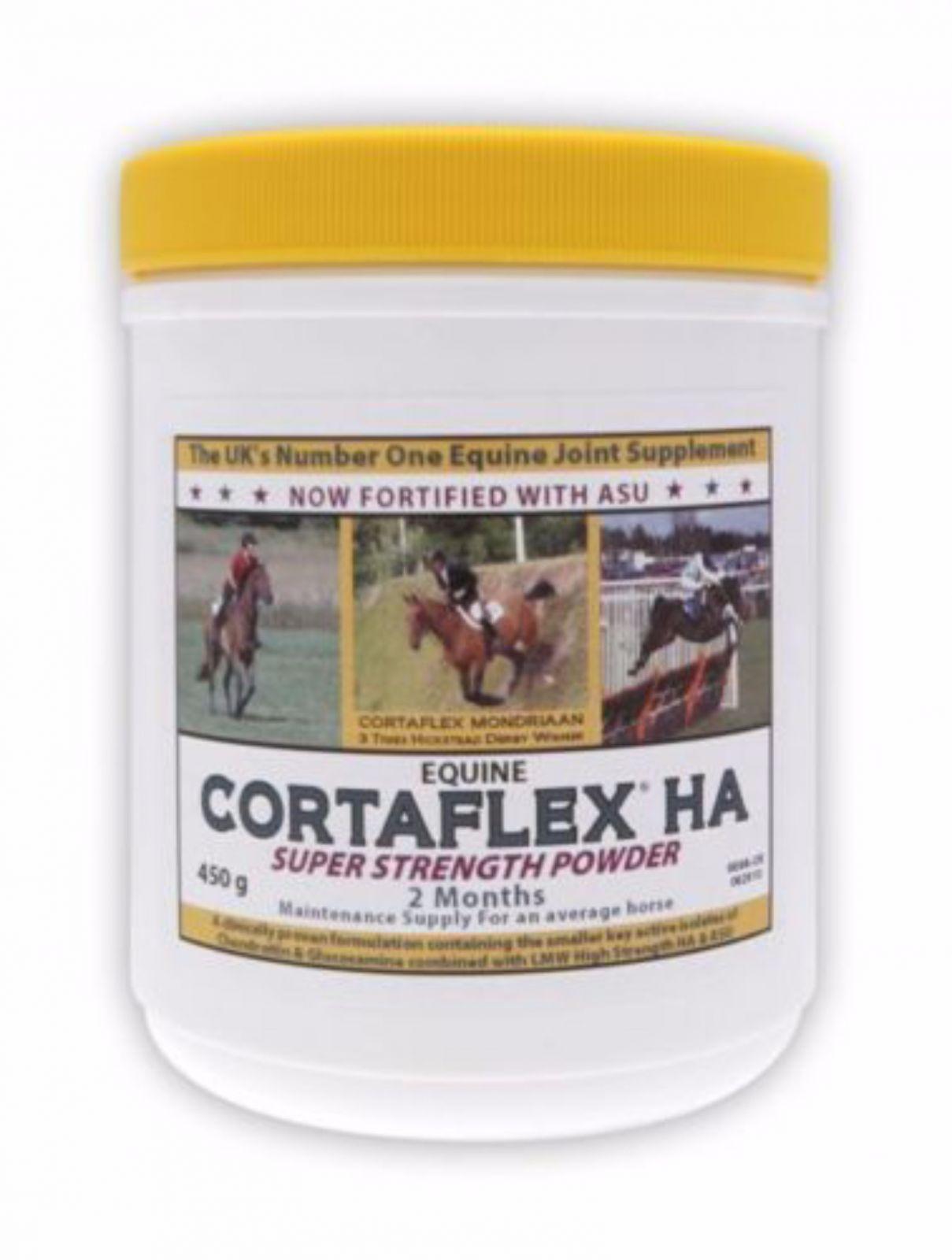 Equine America Cortaflex Powder HA