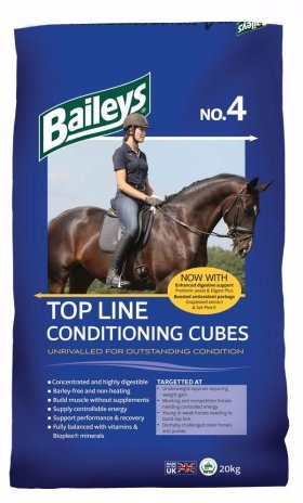 Bailey's No 4 Top Line Conditioning Cubes